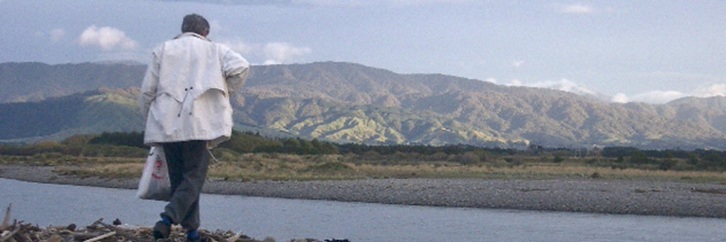 Otaki River and the Tararuas