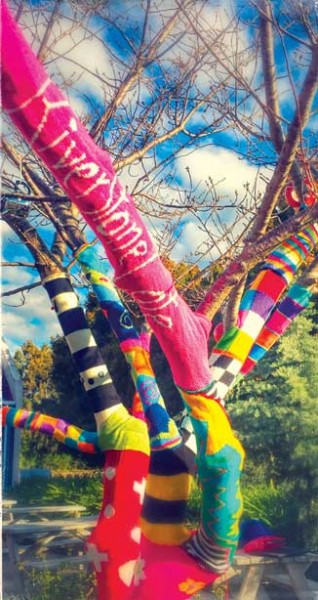Se14_Yarnbomb-tree