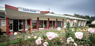 DE14_Levin-Home-war-veterans