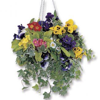 DE14_hanging-basket