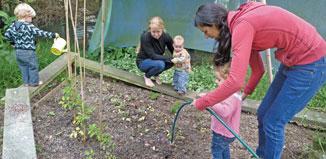 Garden Tasks