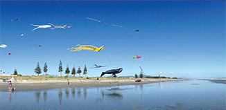 F_R_FE15_KiteFestival