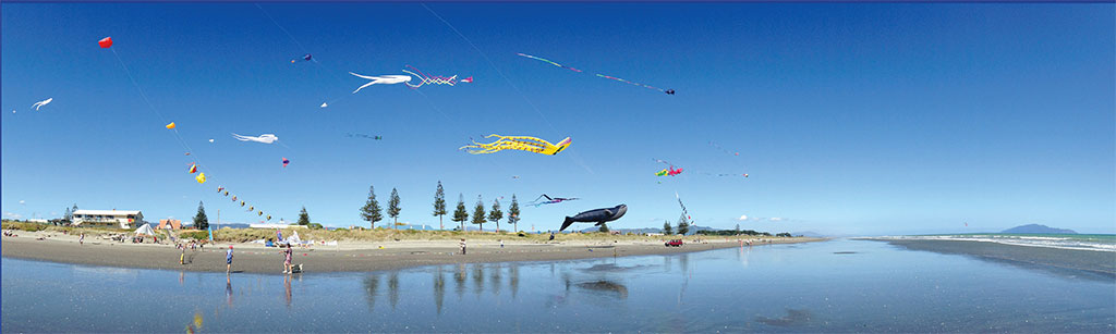 R_FE15_KiteFestival