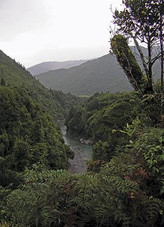 View of Otaki River from terrace at Otaki Forks.