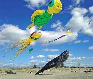 MR15_KCDC-kites1