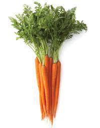 MY15_garden-carrots2.jpg