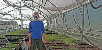 Mayatiita Southerwood and his microgreens