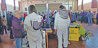 Visitors from outer space, or Bee club recruiters?