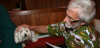 Sasha, a Maltese terrier-Jack Russell cross, isn't so sure about the St Francis Pet Blessing Service and she doesn't quite recognise Vicar Ian Campbell, but takes his attention calmly.