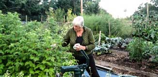 Christine uses some of her WOOFing time picking summer berries