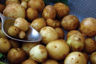 XS15_TasteXmas-newpotatoes.jpg