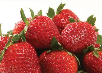 XS15_TasteXmas-strawberries1.jpg